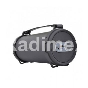 Безжична тонколона ASTRUM AS310